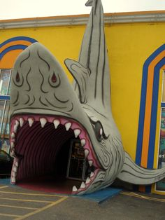 South Padre Island <3 Best Under the Sea store!!