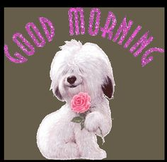 Sweet Puppy - Good morning Glitter