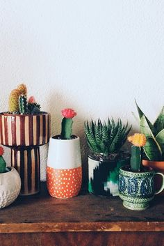 Quirky ceramics and succulents.