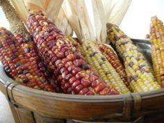 5 mermeladas raras pero muy mexicanas: Jalea de mazorca de maíz