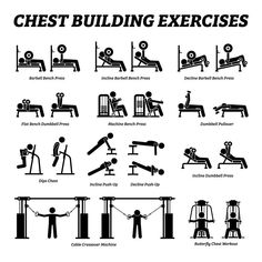 Chest Workout For Men, Gym Workouts For Men, Workout Routine For Men, Weight Lifting Workouts, Gym Workout Tips, At Home Workouts, Weight Lifting Plan, Workout Programs For Men, Dumbbell Chest Workout