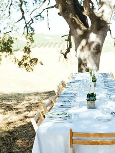 Pretty outside dinner party!
