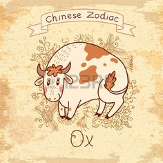 Vintage card with Chinese Zodiac - Ox. Vector illustration.