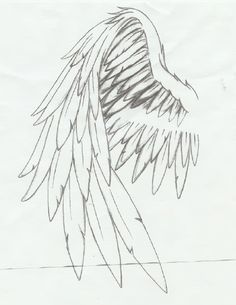 angel wings drawing artjennifer projects to try pinterest Dragon Wings slight fold in the wings instead of dramatic fold