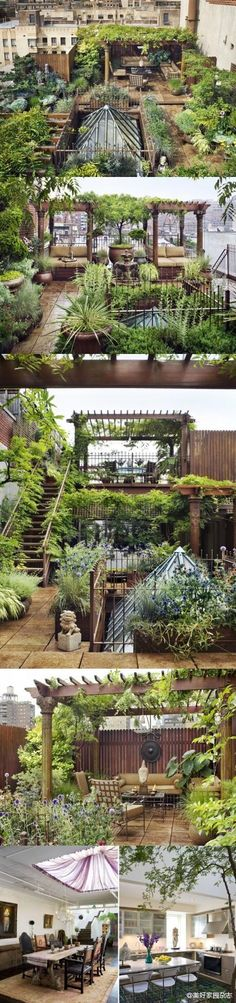 @Ida Nelson Cohen & @Christina Childress Elizabeth how about this for a roof garden?