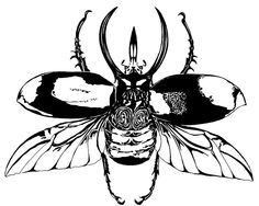 Stag Beetle Flight - Emily Carter