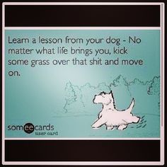 Learn a lesson from your dog - No matter what life brings you, kick some grass over that $#!+ and move on. #calstrength #thestruggle