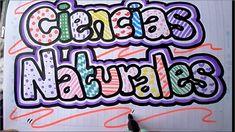 Como marcar un cuaderno de ciencias naturales