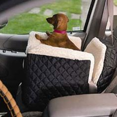Lookout Pet Seat. Izzy would love it!