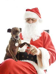 Santa and Gus, via Flickr.