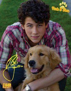 Nick Jonas Misses Dog Elvis - Nick Jonas - Fanpop