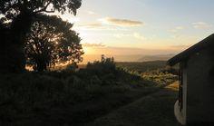 Sopa Lodge, Ngorongoro Crater (gemaakt in Ngorongoro krater)