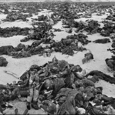 1943 - BATALHA DE STALINGRADO: operação militar conduzida pelos alemães contra as forças russas pela posse da cidade de Stalingrado, às margens do rio Volga, na antiga União Soviética, entre 17 de julho de 1942 e 2 de fevereiro de 1943. A batalha marcou o limite da expansão alemã no território soviético e é considerada a maior e mais sangrenta batalha de toda a História, causando a morte e ferimentos em cerca de dois milhões de soldados e civis.