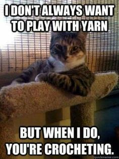 I don't always want to play with yarn... - What more to say other than we just LOVE cool stuff!