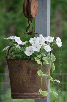 Flower Garden Antique Metal Bucket Hanging Basket - Vintage garden design is a growing trend all around the world. Check out the best decor ideas and make your outdoor space truly gorgeous. Vintage Garden Decor, Vintage Gardening, Organic Gardening, Rustic Garden Decor, Outdoor Garden Decor, Vintage Planters, Farmhouse Landscaping, Front Yard Landscaping, Landscaping Ideas