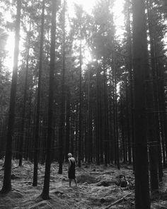 """Cecilie Krog   BYKROG (@by_krog) på Instagram: """"Lost in the beauty of nature 🙌🏼 #intothewoods #sweden #nature"""""""