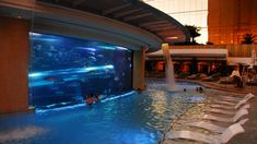 Aquarium Pool at the Golden Nugget, Las Vegas-- Swim side by side with sharks & fish!!