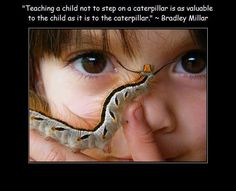 """Teaching a child not to step on a caterpillar is as valuable to the child as it is to the caterpillar"" - Bradley Millar"