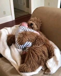 Cute Funny Animals, Cute Baby Animals, Animals And Pets, Cute Animal Videos, Funny Animal Pictures, Cute Baby Videos, Cute Dogs And Puppies, I Love Dogs, Doggies