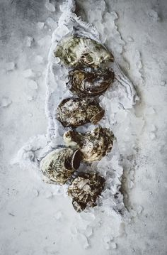 Grilled Oysters with Bacon Cayenne Butter | upcloseandtasty.com | #oysters | #butter | #grilling | #seafood | #recipes