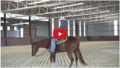 Here Warwick Schiller shows you how the philosophy of Making The Wrong Thing Hard And The Right Thing easy applies to something a bit more technical like a reining spin. Would you use these techniques to teach your horse to. Horse Training Tips, Horse Tips, Horse Exercises, Training Exercises, Warwick Schiller, Ranch Riding, Horse Magazine, Reining Horses, Dream Barn