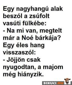 Amikor a fagyi visszanyal :D Really Funny, Funny Cute, The Funny, Funny Images, Funny Pictures, Just Kidding, Pranks, Cringe, Funny Jokes