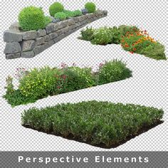 Photoshop Images, Photoshop Design, Photoshop Elements, Landscape Design Plans, Landscape Architecture, Photoshop Rendering, Tree Plan, Architecture Graphics, 3d Texture