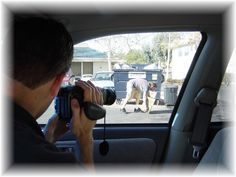 Private Investigation and Surveillance Services