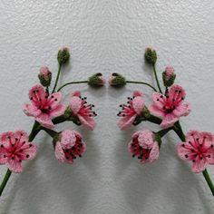 Fruit Flowering Blossoms CAL  Pattern # 1: Pink Blackberry Blossoms