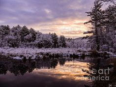 Lakes Region Morning Snow, by Mim White