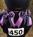 Purple and navy horse show bows