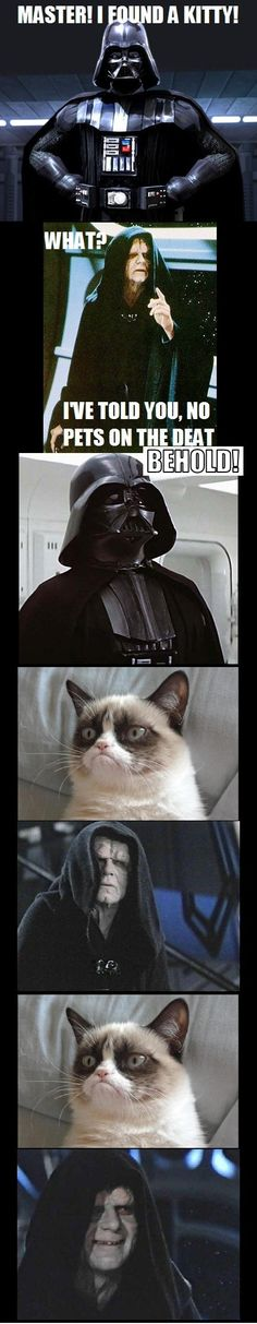 Grumpy cat pleases the Dark Side. #humor #starwarshumor #grumpycat