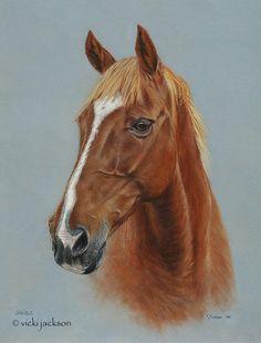 Vicki Jackson - Fine Art Animal Portraits in Pastel - Artwork - Horses