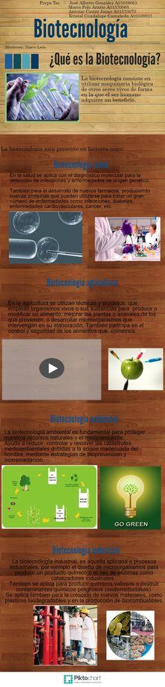 Infographic Biotecnologia aula materia poster para 4ºESO