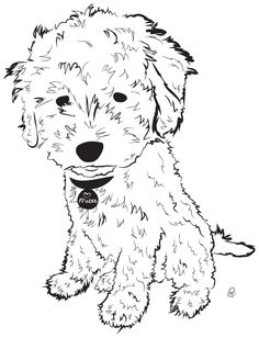 Goldendoodle -- Charity Pups raises awareness and dollars for a different animal-related non-profit each month through dog illustrations. www.charitypups.com #dog #illustration #cute #adorable #puppy #goldendoodle