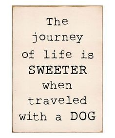 25 Inspirational Advice Given By The Pets In Your Life Source by vonundzutausend dog dog memes dog videos videos wallpaper dog memes dog quotes dogs dogs pictures dogs videos puppies puppy video Best Dog Quotes, Puppy Quotes, Motivacional Quotes, Dog Quotes Funny, Life Quotes Love, Animal Quotes, Funny Dogs, Dog Quotes Love, A Girl And Her Dog Quotes