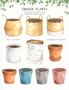 The set of high quality hand painted watercolor indoor plants and plant pots images. A fiddle leaf fig, snake plant, cactus and other animal illustrations are Watercolor Plants, Wreath Watercolor, Watercolor Leaves, Watercolor Drawing, Plant Painting, Plant Drawing, Plant Illustration, Watercolor Illustration, Potted Plants