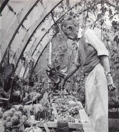 1966. Leonard Woolf in the greenhouse. Frederic Spotts Collection,  Mortimer Rare Book Room, Smith College.