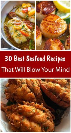 30 Best Seafood Recipes That Will Blow Your Mind – Healthy Food: Recipes, food., 30 Best Seafood Recipes That Will Blow Your Mind – Healthy Food: Recipes, food. Seafood Dinner, Fish And Seafood, Fish Dishes, Tasty Dishes, Shrimp And Sausage Pasta, Cooking Recipes, Healthy Recipes, Healthy Food, Healthy Weight