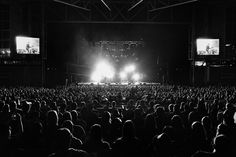 City and Colour at the Molson Amphitheater in Toronto Ontario Canada. By: Jess Baumung City And Colour, Color, Toronto Ontario Canada, Concert, Music, Photography, Musica, Musik, Photograph