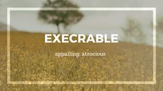 20 Beautiful Spanish Words to Add to Your Vocabulary - Quotes Fancy Words, Weird Words, Rare Words, Big Words, Words To Use, More Than Words, Cool Words, Beautiful Spanish Words, Words In Different Languages