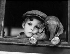 Luckiest boy in the world!  I want an elephant so badly!!!