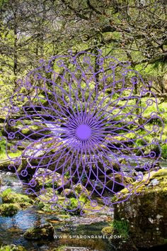 This is the time to ground, to weave the webs of resilience that keep us connected to our loved ones..... read more .... #shamanicjourneying #spirituality #lifepurpose