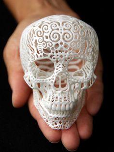 Josh Harker - Crania Anatomica Filigre- Small | VAULT