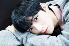 Yokohoma Arena Concert in Japan Jisoo Seventeen, Joshua Seventeen, Seventeen Memes, Seventeen Debut, Woozi, Jeonghan, Hong Jisoo, Won Woo, Joshua Hong