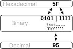 54 Best Binary to Hexadecimal Converter images in 2017