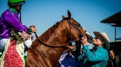 California Chrome gets a well-deserved kiss from his trainer, Art Sherman, after winning the 2014 Santa Anita Derby