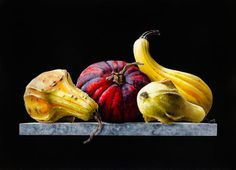 Ottorino De Lucchi - Gourds | From a unique collection of still-life drawings and watercolors at http://www.1stdibs.com/art/drawings-watercolor-paintings/still-life-drawings-watercolors/