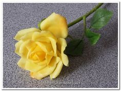 Rose from polymer clay. Tutorial