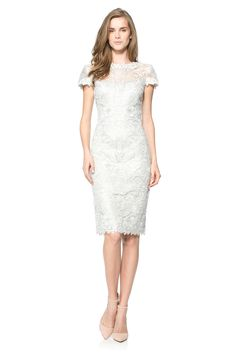 Corded Embroidery on Tulle Cap Sleeve Dress in Silver | Tadashi Shoji
